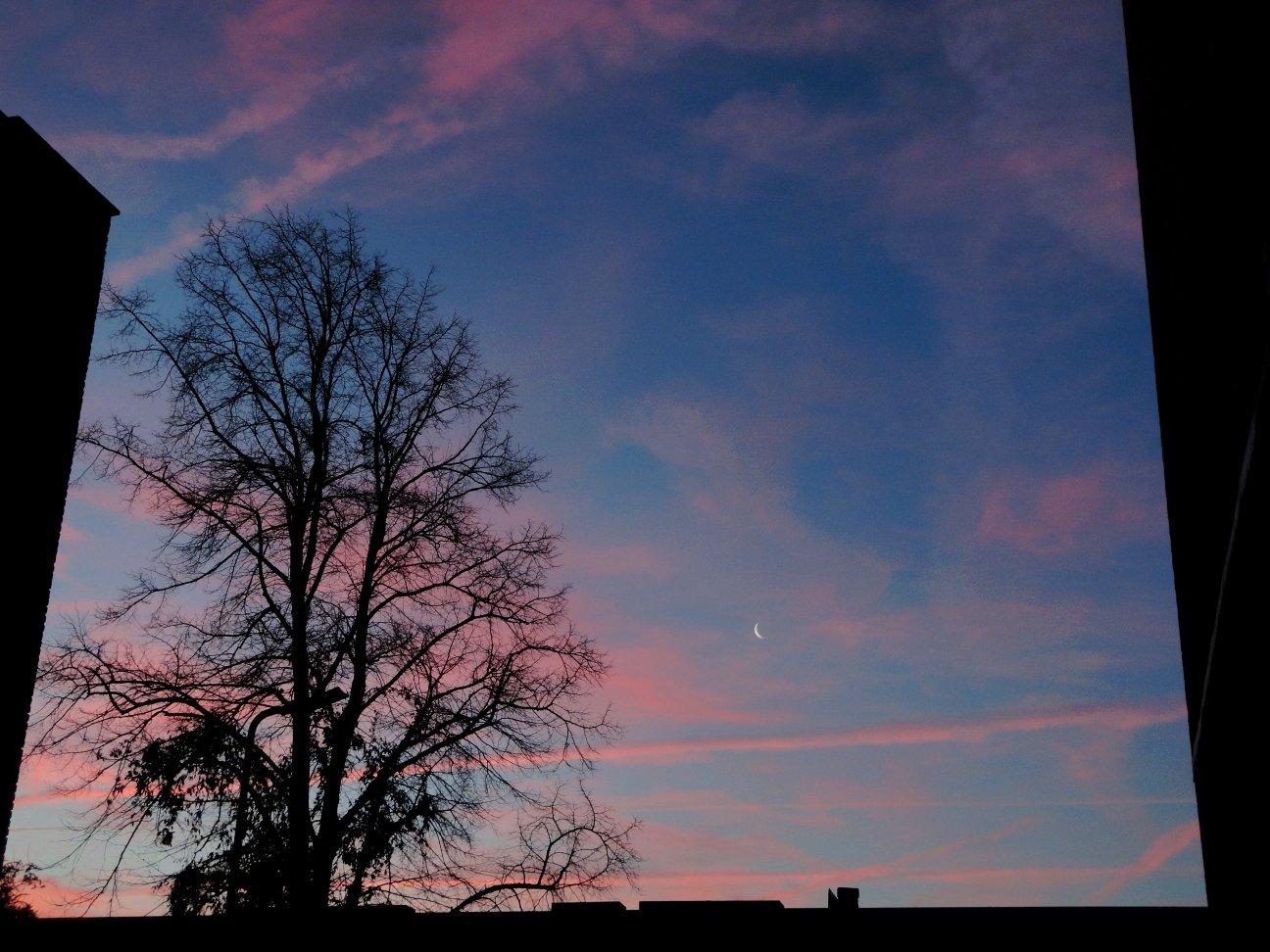 January13 105_s
