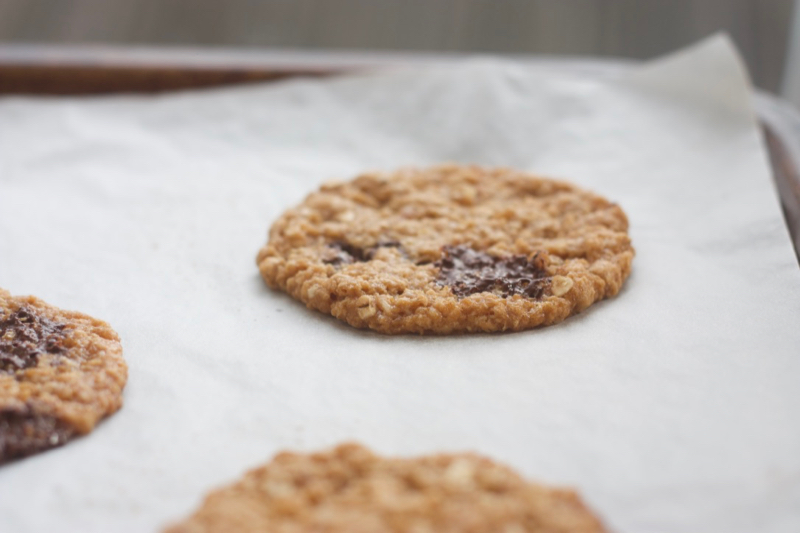 Malt oat chocolate chunk cookies, baked